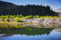 Calm mountain lake and forest reflected in water Royalty Free Stock Photography