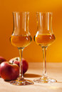 Calvados brandy two glasses of and red apples Royalty Free Stock Photos