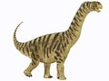 Camarasaurus juvenile was a sauropod dinosaur that lived in north america in the jurassic age Stock Images