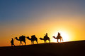 Camel caravan going through the desert Royalty Free Stock Photos