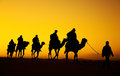 Camel caravan silhouette through the sand dunes in the sahara desert morocco Stock Photo