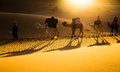 Camel caravan tourists riding camels in the sahara desert morocco Royalty Free Stock Photography