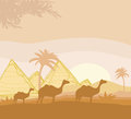 Camel caravan in wild africa landscape illustration Stock Photography