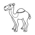 camel desert isolated icon design Royalty Free Stock Photo