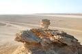 Camel head rock Royalty Free Stock Photo