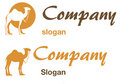 Camel logo Royalty Free Stock Photos