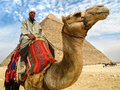 Camel Man in Front of Giza Pyramid, Cairo, Egypt Royalty Free Stock Photo