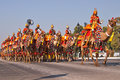 Camel mounted band on parade musicians of the indian border security force riding their camels down the raj path in preparation Stock Photos