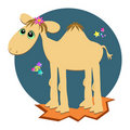 Camel in the Night Royalty Free Stock Photo