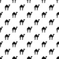 Camel pattern vector