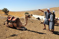 Camel Ride and Desert Activities in the Judean Desert Israel Royalty Free Stock Photo
