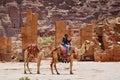 Camel rider Royalty Free Stock Photo