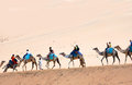 Camel riding tourists on dromedaries through the desert in egypt activity for tourists is an welcome income source for Stock Photos