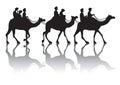 Camel s caravan