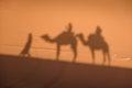 Camel shadows on Sahara Desert sand in Morocco. Royalty Free Stock Photo
