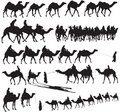 Camel Silhouettes Royalty Free Stock Images