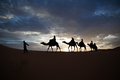 Camel train silhouetted against colorful sky crossing the Sahara Royalty Free Stock Photo