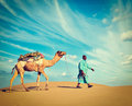 Cameleer camel driver rajasthan india vintage retro hipster style travel image of travel background indian with camels in dunes of Stock Photography