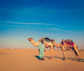 Cameleer camel driver rajasthan india vintage retro hipster style travel image of travel background indian with camels in dunes of Royalty Free Stock Photos