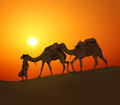 Cameleerand camels silhouette against sunset cameleer leading caravan of in desert Stock Photo