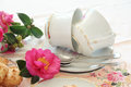 Camellias And Teacups Royalty Free Stock Images