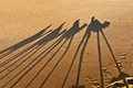 Camels shadows over Erg Chebbi at Morocco Royalty Free Stock Photo