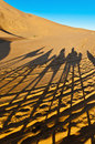 Camels shadows over Erg Chebbi at Morocco Stock Photo