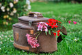 Camera bag in brown color on green grass with flowers Stock Images