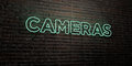 CAMERAS -Realistic Neon Sign on Brick Wall background - 3D rendered royalty free stock image