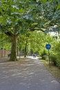 Caminata en el parque en otoño Imagen de archivo