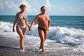 Camminata di accoppiamenti su Pebble Beach Fotografia Stock Libera da Diritti