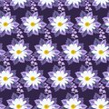 Camomile and bell flowers stylized seamless pattern in vector. Print for fabric, wallpaper, wrapping design.