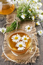 Camomile tea and bouquet of flowers Royalty Free Stock Photo
