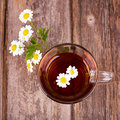 Camomile tea glass cup of with flowers on vintage wood table Stock Photography