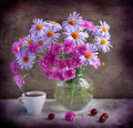 Camomiles and carnations Royalty Free Stock Photo