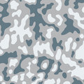 Camouflage Royalty Free Stock Image