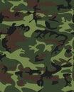 Camouflage pattern background seamless illustration. Clas