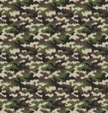 Camouflage pattern background seamless vector illustration.