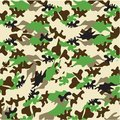 Camouflage pattern vector illustration of the Royalty Free Stock Images