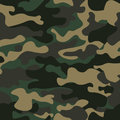 Camouflage seamless pattern background. Classic clothing style masking camo repeat print. Green brown black olive colors