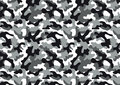 Camouflage seamless pattern Royalty Free Stock Photo