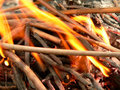 Camp-fire Royalty Free Stock Photo
