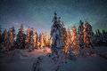 Camp fire in forest in Lapland Royalty Free Stock Photo