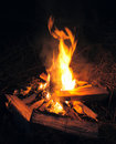 Camp fire in night Stock Photos
