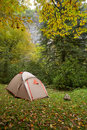 Camp at forest in  mountains Stock Image