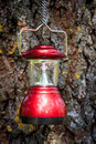 Camp lantern on cortex tree background Royalty Free Stock Photo