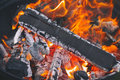 Campfire background. Flame background. Royalty Free Stock Photo