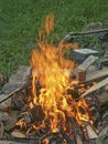 Burning Campfire on the meadow Royalty Free Stock Photo