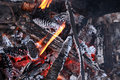 Campfire Closeup Background Royalty Free Stock Photo