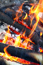 Campfire closeup with burning firewood on foreground Royalty Free Stock Photography